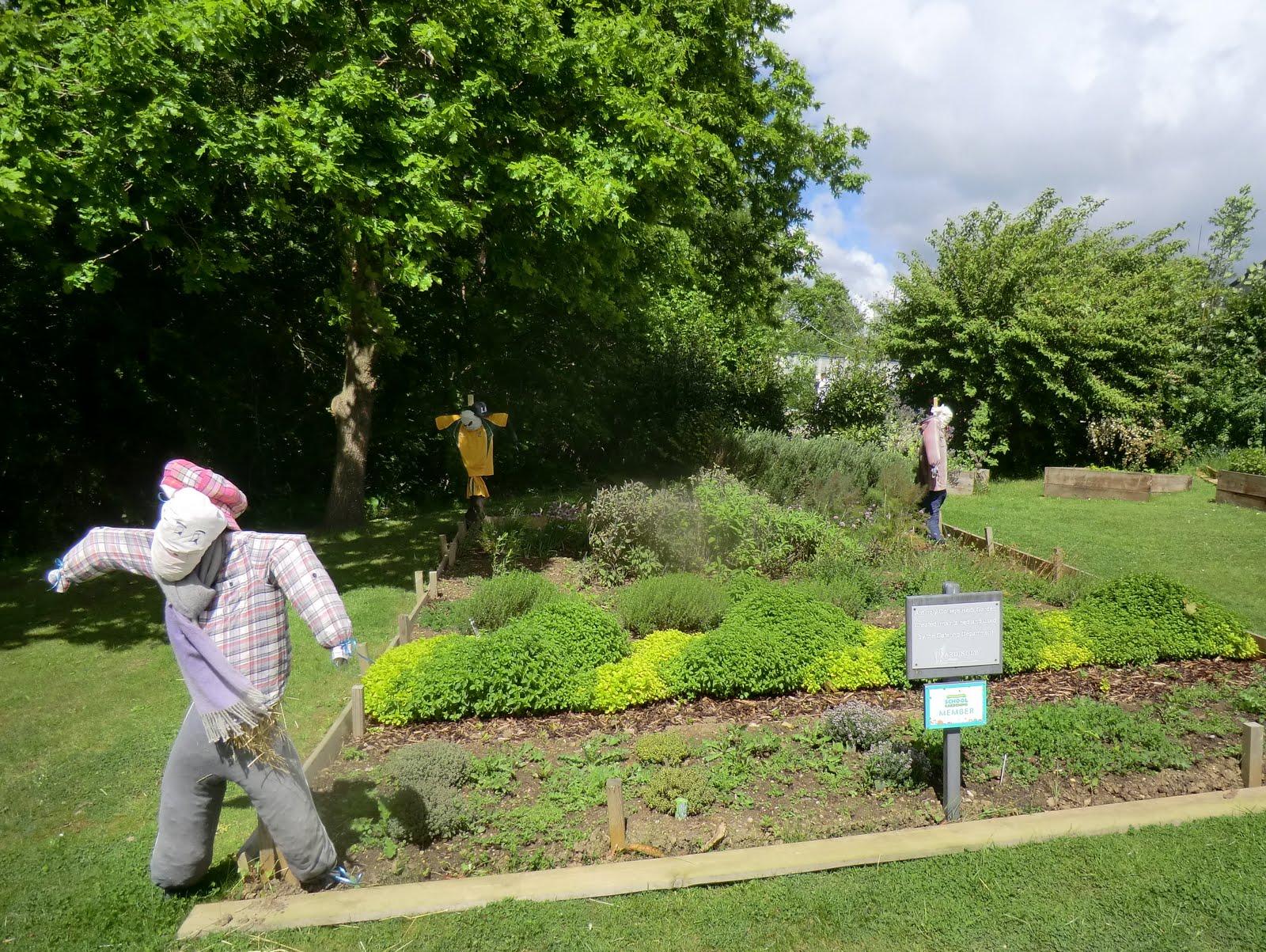 CIMG0303 Ardingly College Herb Garden