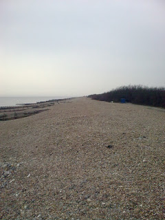 Image0301 Shingle beach near Sea View Cafe, Goring