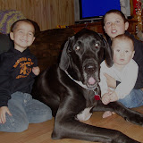 The Dynamite Danes Family! - Christmas%2B2007%2B043.JPG