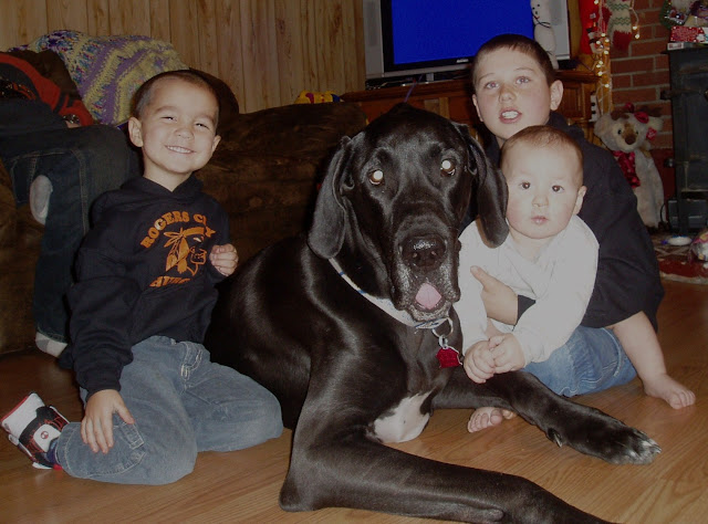 The Dynamite Danes Family! - Christmas%2B2007%2B043.JPG