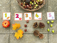 Fall Counting Activities Using Nature's Objects (FREE Printable)