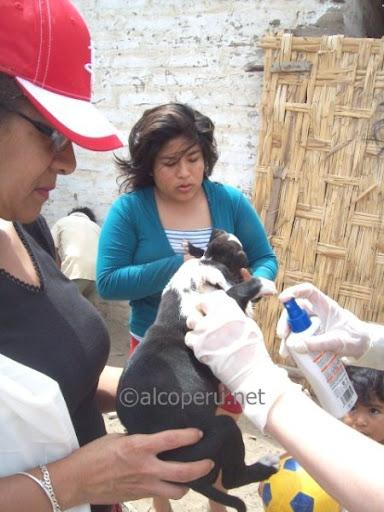 huacho2010 (26)