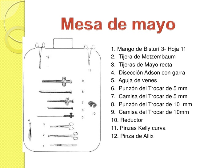 ACOMODO DE LA MESA DE MAYO EBOOK DOWNLOAD