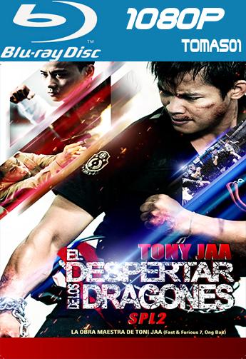 El despertar de los dragones (2015) BDRip 1080p DTS