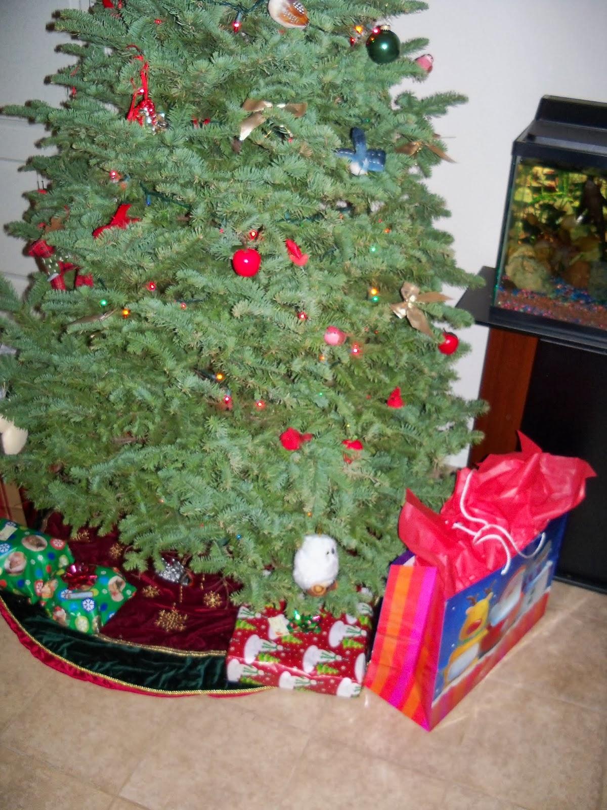 Christmas 2013 - 115_9715.JPG