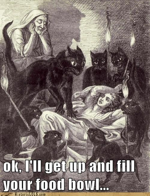 Drawing of a bunch of black cats attacking a women in her bed...alright, I'll fill your food dish