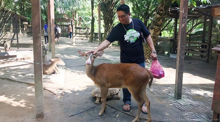 petting_zoo_selangor