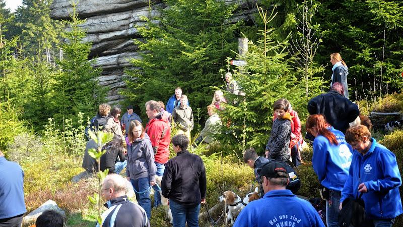 2014-04-13 - Waldführung am kleinen Waldstein (von Uwe Look) - DSC_0442.JPG