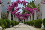 Фото 3 Bendis Beach Hotel Ex. Tansel Beach Hotel