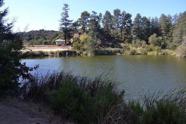 upper reservoir in Franklin Canyon