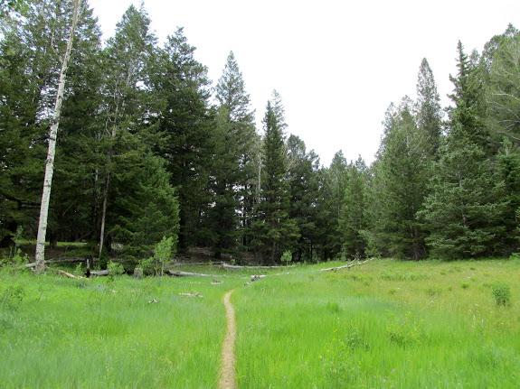 Josephite Point Trail