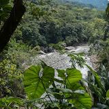 Río Cravo Sur, Sendero Ecológico La Virgen de La Peña, El Morro, 640 m (Casanare, Colombie), 21 novembre 2015. Photo : C. Basset