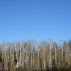 Озеро Круглое Подгоренский район 012.jpg