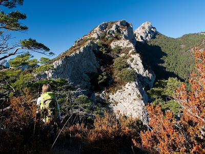 Carena del Serrat dels Trulls, i la Roca Tallada al fons