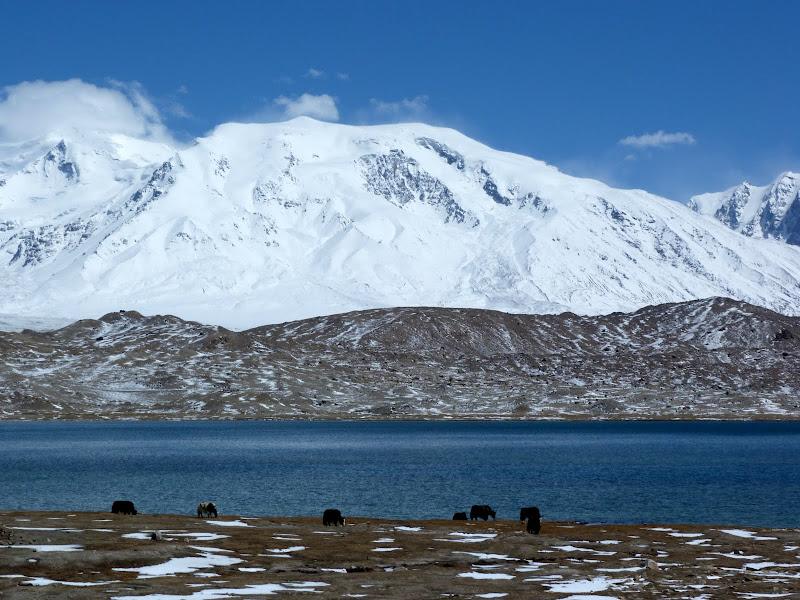 XINJIANG. Karakoram Highway, lune des plus haute route au monde, en passant a 4400 m - P1280517.JPG