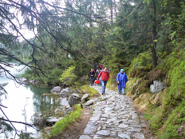 Zajęcia terenowe w Tatrzańskim Parku Narodowym - P1610607.JPG