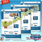 Website hostel pensiune vila
