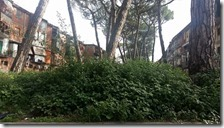Il degrado nel parco pubblico di via Maiella