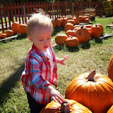 Pumpkin Patch - 114_6530.JPG