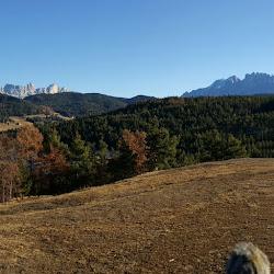 Wanderung Steinegg 29.12.2015.jpg