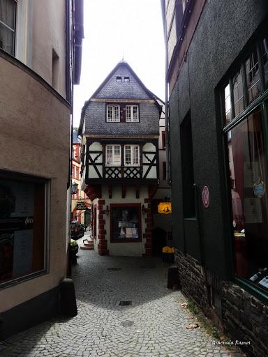passeando - Passeando pela Suíça - 2012 - Página 21 DSC08331