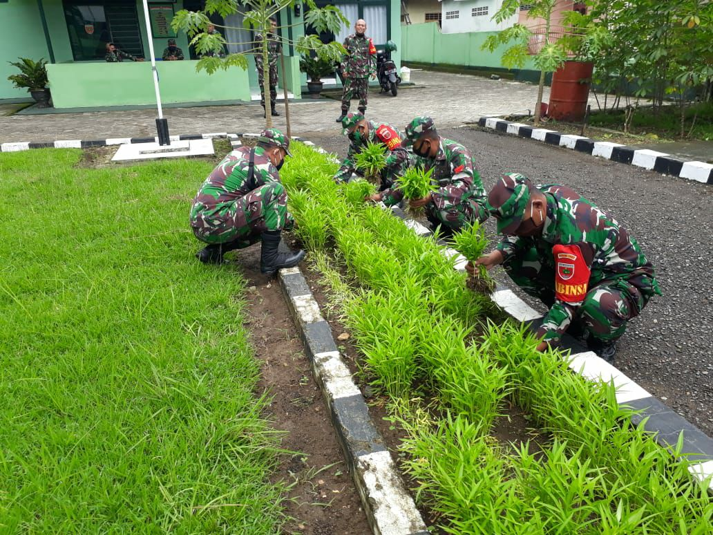 Patut Dicontoh, Koramil 1407-07/Tanete Riattang Jadikan Pekarangan Ketahanan Pangan