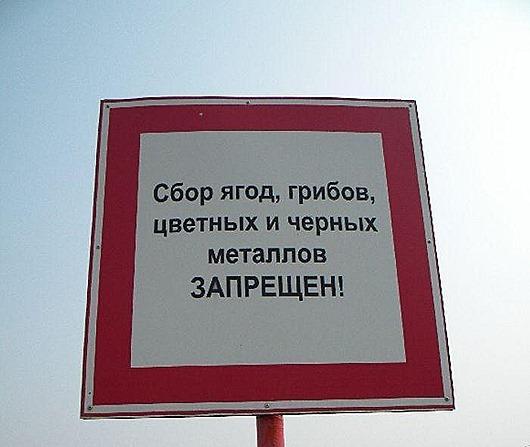 kreativnye-rossijskie-zaprety-qe6l2vb3ba02-003
