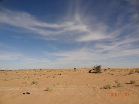 Marrocos e Mauritãnia a Queimar Pneu e Gasolina - Página 7 DSC06060
