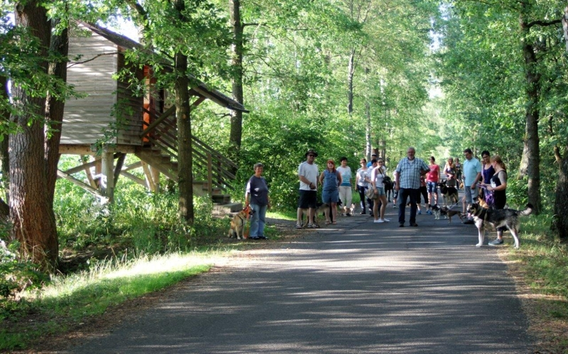 On Tour am Obersee bei Eschenbach: 21. Juli 2015 - Eschenbach%2B%25288%2529.jpg