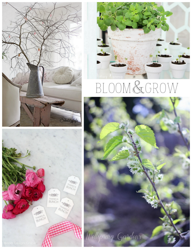 Bloom & Grow via homework