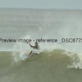 _DSC8773.JPG