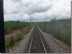 voie entre Tynda et Nerioungri