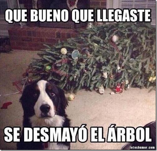 humor navidad 2017 (1)