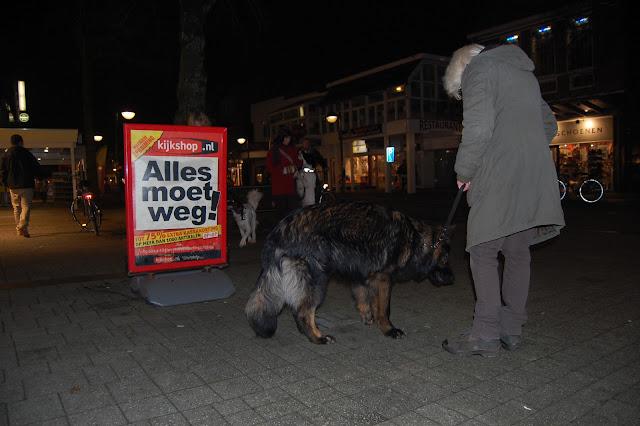 Jonge Hond centrum Emmen - 2012-04-01%2B013.JPG