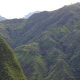 Entre Apuela et Peñaherrera, 1750 m, Intag (Imbabura, Équateur), 10 décembre 2013. Photo : J.-M. Gayman
