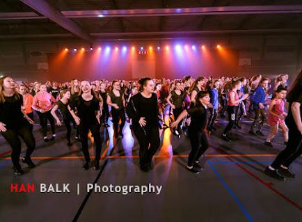 Han Balk Voorster Dansdag 2016-4324.jpg