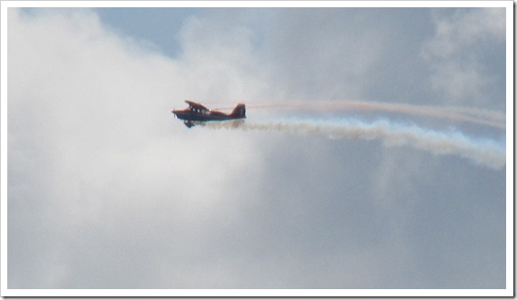 Stunt Plane Red White Blue Stripe   John Black Super Decatlon (8)