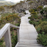 Board walk from Charlotte Pass Lookout (96745)