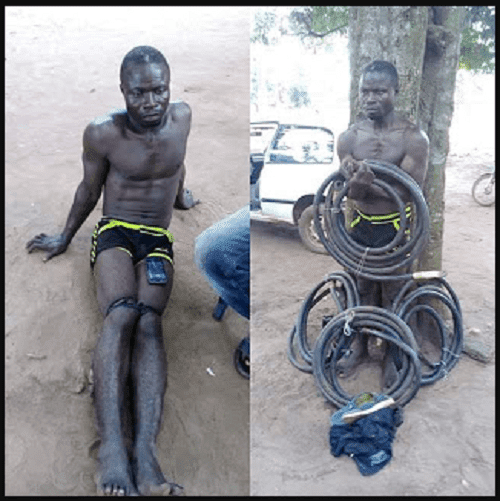 Notorious transformer cable thief nabbed in Ogun State (Photos)