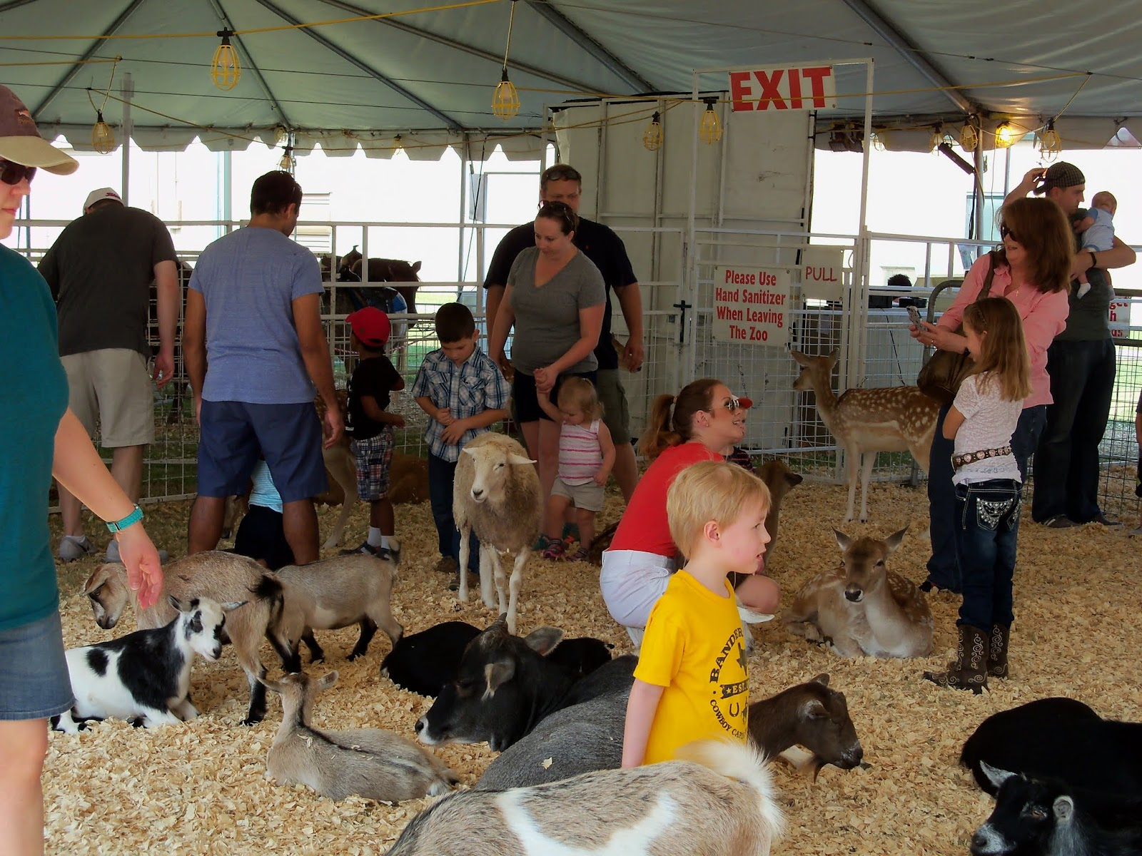 Fort Bend County Fair 2015 - 100_0207.JPG