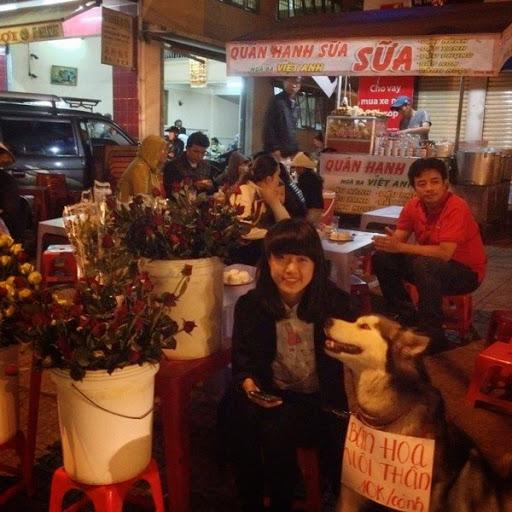 Đoan Trang và chú chó alaska của mình