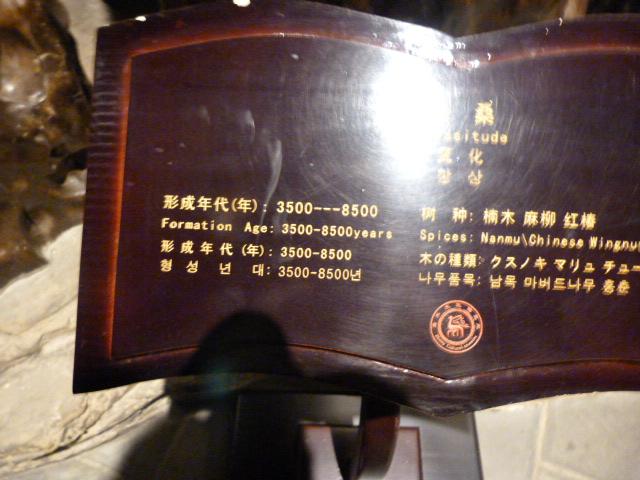 CHINE.SICHUAN.RETOUR A LESHAN - 1sichuan%2B1133.JPG