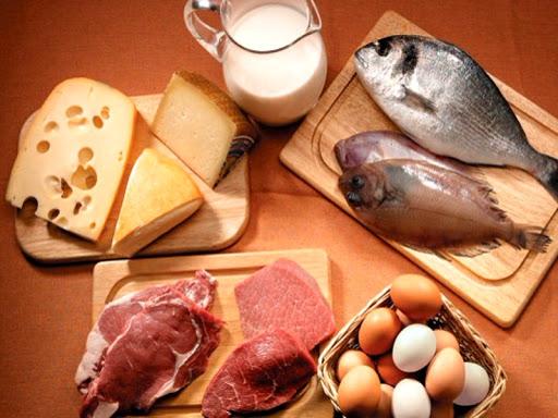 Photo Белковая пища