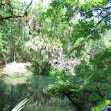 04-04-12 Hillsborough River State Park - IMGP9665.JPG