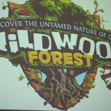 "VBS 2009 - ""Wildwood Forest"""