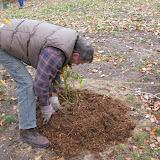 Hammo Planting - Shannon Schiesser - IMG_4901.JPG