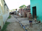 A road of homes in Amarpurkashi