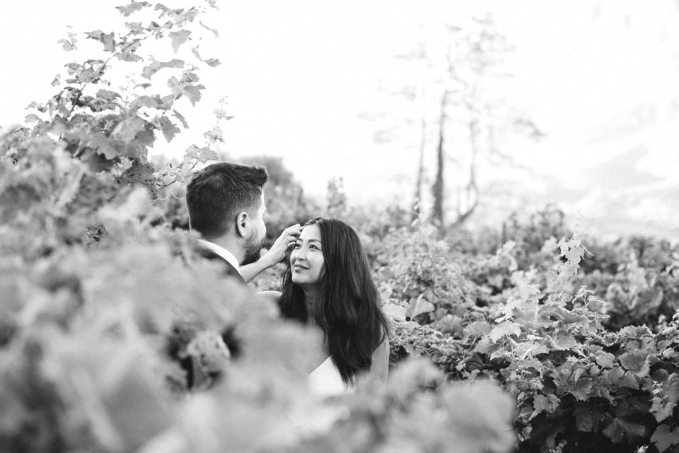 Grace and Alfonso wedding Clouds Estate Stellenbosch South Africa shot by dna photographers 729.jpg