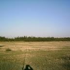 2012 15 August 006.jpg