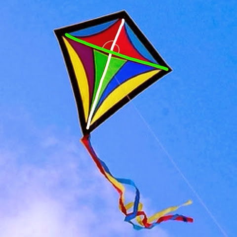 Real World Geometry Geometric Kites In Nature